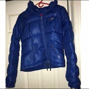 Blue Hollister puffer coat